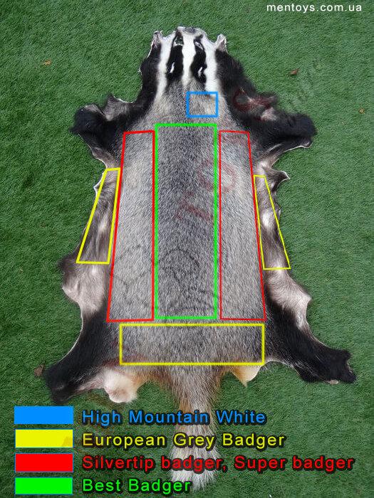 места на барсучеьй шкуре откуда берут соответствуюший ворс