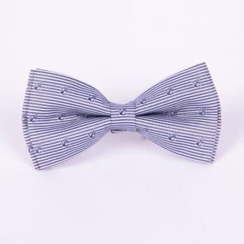 Полосатая галстук-бабочка с якорями